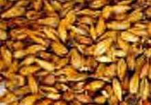 A base malt used to produce typical top-fermented, rye flavoured beers.