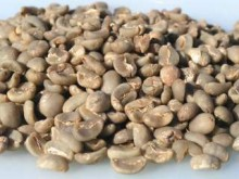 This is a quality Robusta, best suited for inclusion in an Espresso blend as a reliable builder of body, aroma and fruited complexities.