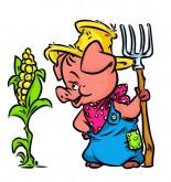 New Harvest Wheat Recipe