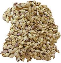 malted-grain.jpg
